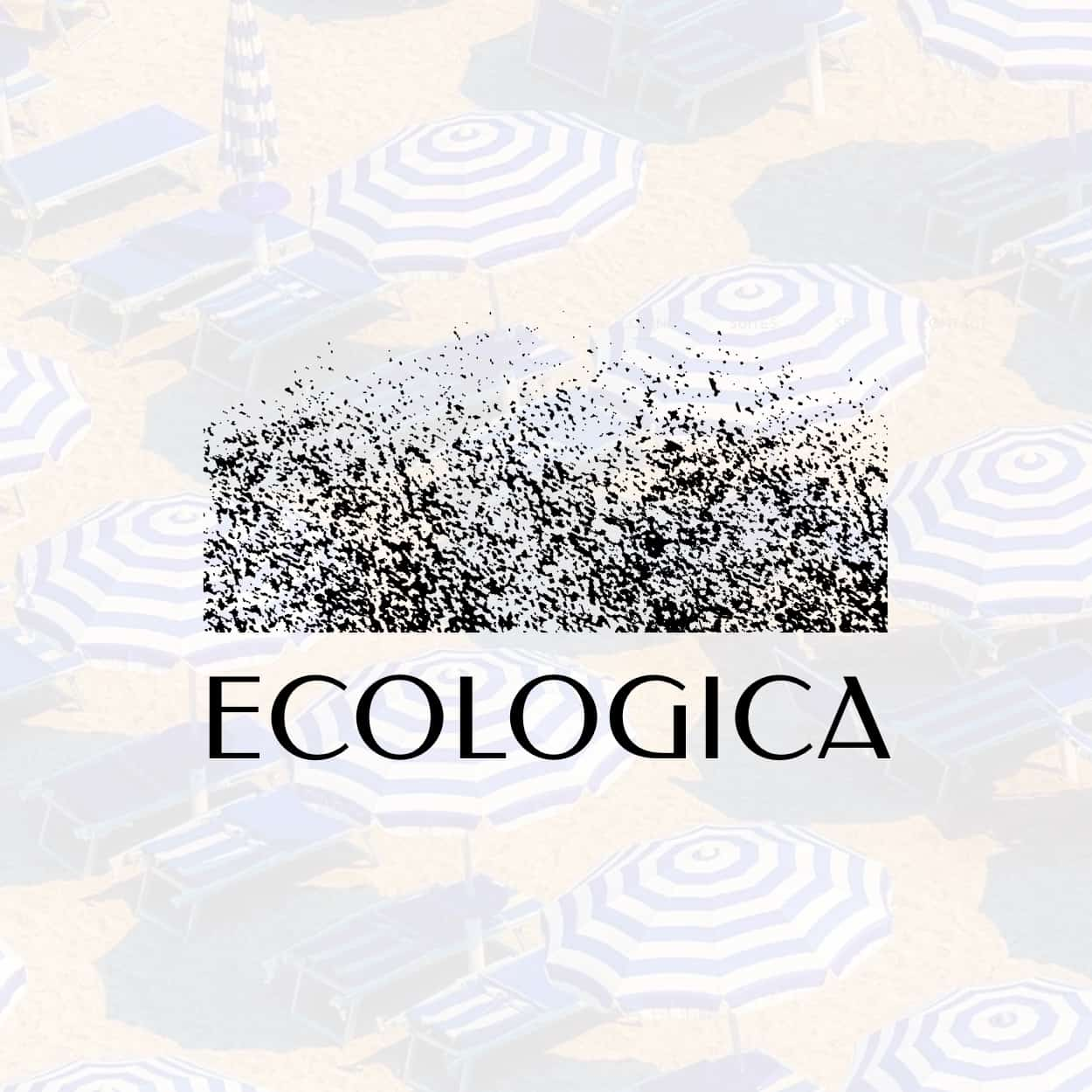 Let's Design Nadia Ornstein - Ecologica Website Design